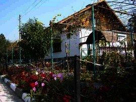 Bulgarian estate in Pleven region rural house Ref. No 5037
