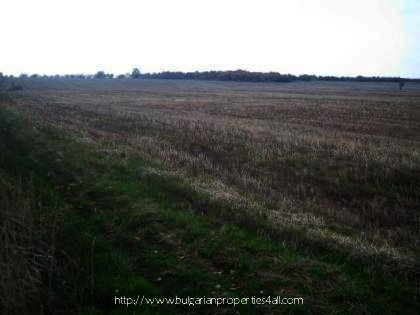 Bulgarian land in rural Haskovo region Ref. No 2329