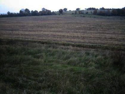 Land for sale in Haskovo region invest in Bulgaria Ref. No 2328