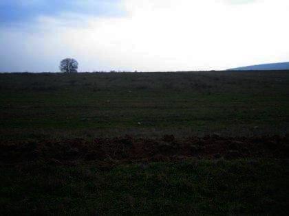 Land for sale near Haskovo Bulgaria investment Ref. No 2324