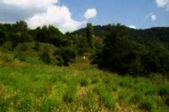 Land for sale in Pamporovo region Ref. No 122025