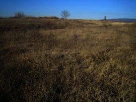 Land near Svilengrad Property in Bulgaria Ref. No 2380