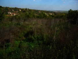 Land for sale near Pleven.Good investment Ref. No 55126