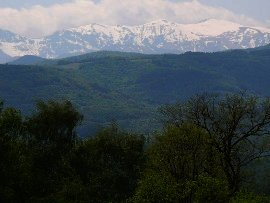 Land for sale in Bulgaria Property in Gabrovo Ref. No 58110