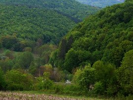 Property in Bulgaria Developement land in Gabrovo Ref. No 58114