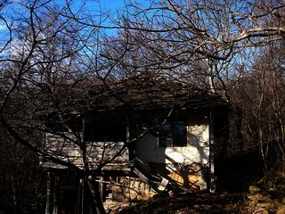 House near Lovech Cheap property in Bulgaria Ref. No 58138