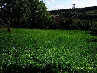 Attractive plot of land in Lovech region. Ref. No 014