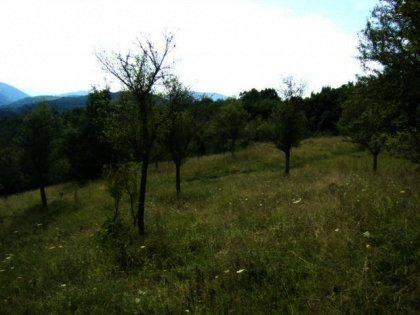 Land for sale near Veliko Tarnovo.Bulgarian property. Ref. No 594053