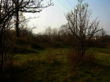 Agricultural land for sale near Gabrovo Ref. No 59045