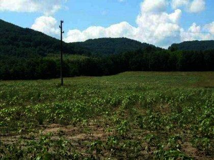 Huge plot of land near Gabrovo Ref. No 591022