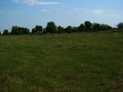 A huge plot of land near Pleven in Bulgaria Ref. No 55160