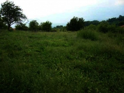 A huge plot of agricultural land for sale near Troyan Ref. No 593002