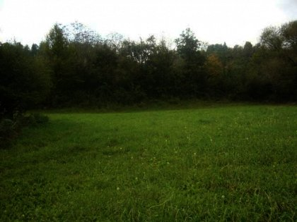 Agricultural plot of bulgarian land for sale in a mountain resort  Ref. No 593046