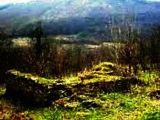 Land for sale near Veliko Tarnovo Ref. No 594082