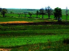 Tempting offer for land near Elhovo Ref. No 12003