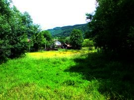 Land with beautiful views revealed Ref. No 56015