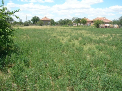 Regulated plot of land in Pleven Buy in Bulgaria Ref. No 55170