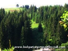 Land for sale in Pamporovo invest in Bulgaria Ref. No 122008