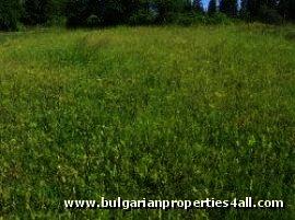 Plot of land near ski resort of Pamporovo property investment Ref. No 122009