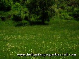 Land for sale near Pamporovo ski resort Ref. No 122132