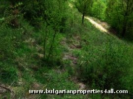 Land for sale near Pamporovo ski resort Smolyan region Ref. No 122101