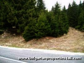 Land for sale near Pamporovo ski resort Ref. No 122083