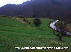 Land for sale near ski resort of Pamporovo  Ref. No 122066