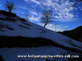 Land for sale in Pamporovo resort area Ref. No 122062