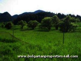 Land for sale near ski slopes of Pamporovo Ref. No 122052