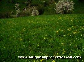 Land for sale in Pamporovo ski resort  Ref. No 122041