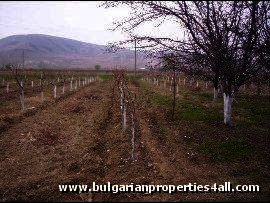 RESERVED Land for sale in fishing area of Plovdiv region Ref. No 241